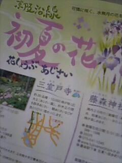 三室戸寺、藤森神社へ行くなら。。