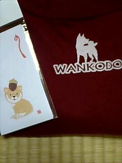 Wanko7